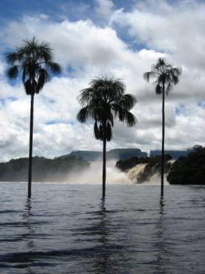Wyprawa do Wenezueli 2006 13