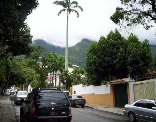 Wyprawa do Wenezueli 2006 29