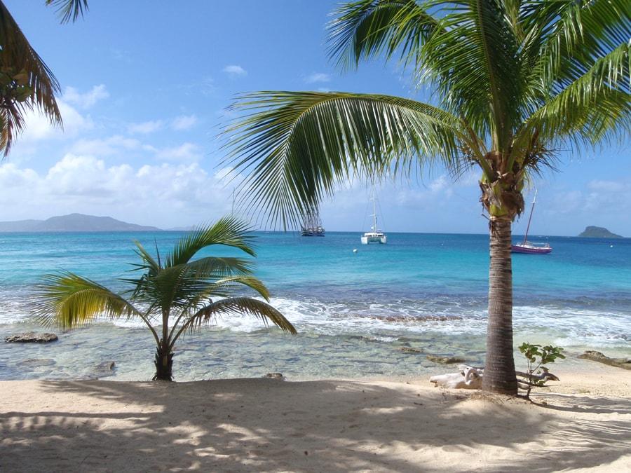 Palmi Island - rejs po Karaibach-min